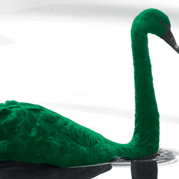 Slider-1280x400-GreenSwan.png